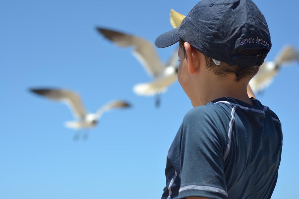 Cádiz, destino para los más pequeños