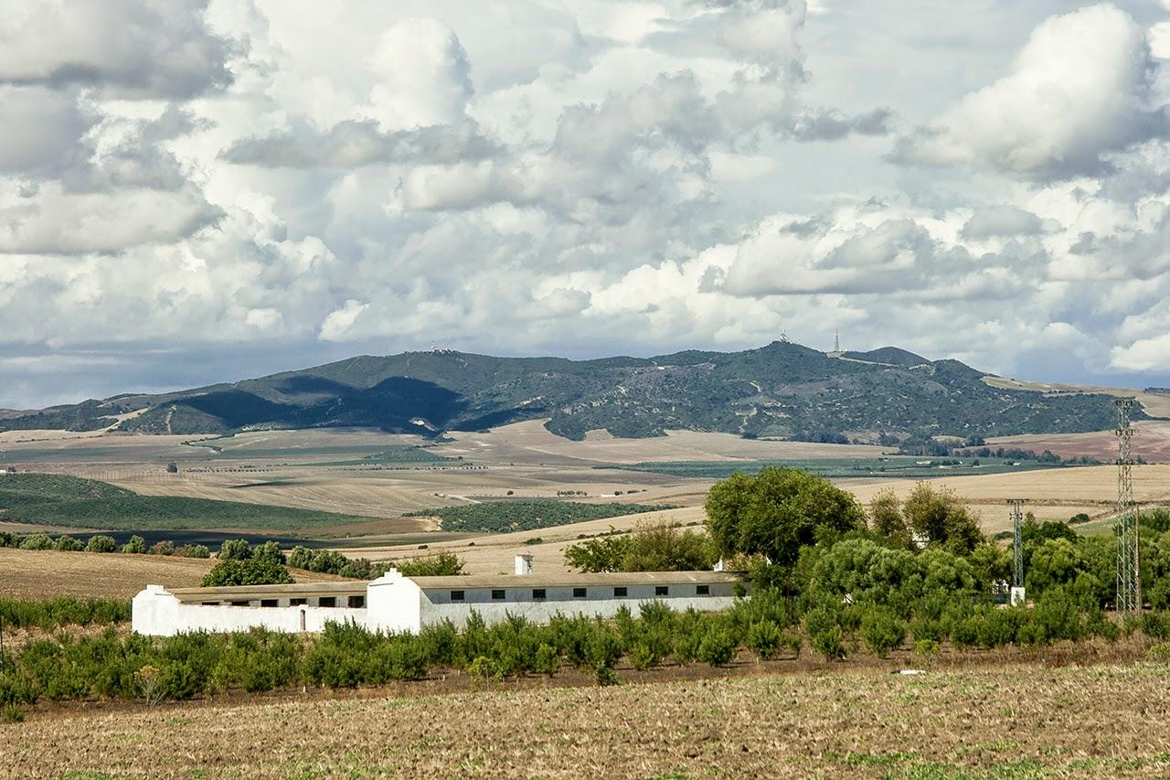 Sierra de Gibalbín Sierras de la provincia de Cádiz