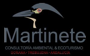 El Martinete