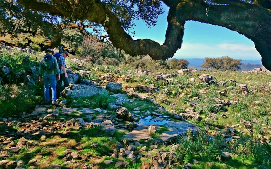 ¡CÁDIZ naturalmente! El sur verde de España